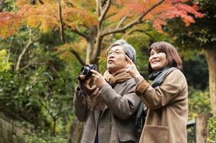 風景を楽しむ笑顔の夫婦の写真素材 [FYI04483044]