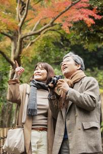 風景を楽しむ笑顔の夫婦の写真素材 [FYI04483045]