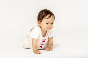 ハイハイしながら遊ぶ女の子の赤ちゃん、斜め前の写真素材 [FYI04483198]