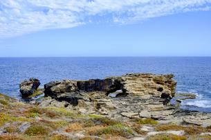 オーストラリア・西オーストラリア州のフリーマントルの沖合約18kmのインド洋に浮かぶロットネスト島の草が茂る岸辺と白い雲の景観の写真素材 [FYI04483311]