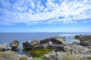オーストラリア・西オーストラリア州のフリーマントルの沖合約18kmのインド洋に浮かぶロットネスト島の草が茂る岸辺と白い雲の景観の写真素材 [FYI04483348]