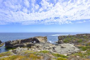 オーストラリア・西オーストラリア州のフリーマントルの沖合約18kmのインド洋に浮かぶロットネスト島の草が茂る岸辺と白い雲の景観の写真素材 [FYI04483351]