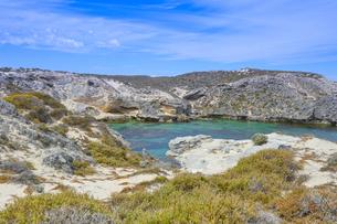 オーストラリア・西オーストラリア州のフリーマントルの沖合約18kmのインド洋に浮かぶロットネスト島の草が茂る岸辺と白い雲の景観の写真素材 [FYI04483360]