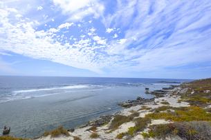 オーストラリア・西オーストラリア州のフリーマントルの沖合約18kmのインド洋に浮かぶロットネスト島の草が茂る岸辺と白い雲の景観の写真素材 [FYI04483377]