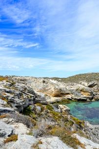 オーストラリア・西オーストラリア州のフリーマントルの沖合約18kmのインド洋に浮かぶロットネスト島の草が茂る岸辺と白い雲の景観の写真素材 [FYI04483381]