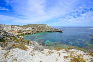 オーストラリア・西オーストラリア州のフリーマントルの沖合約18kmのインド洋に浮かぶロットネスト島の草が茂る岸辺と白い雲の景観の写真素材 [FYI04483382]