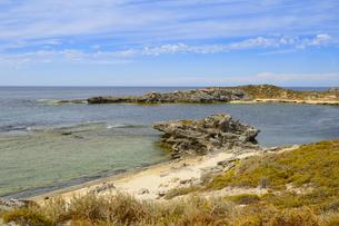 オーストラリア・西オーストラリア州のフリーマントルの沖合約18kmのインド洋に浮かぶロットネスト島の草が茂る岸辺と白い雲の景観の写真素材 [FYI04483383]