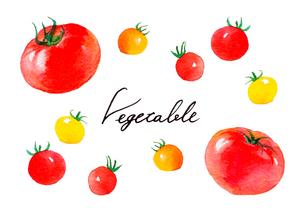 トマトのイラスト素材 [FYI04483413]