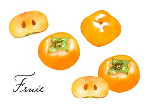 柿のイラスト素材 [FYI04483418]