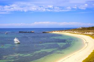 オーストラリア・西オーストラリア州のフリーマントルの沖合約18kmのインド洋に浮かぶロットネスト島の草が茂る岸辺と白い雲と白い船の景観の写真素材 [FYI04483423]