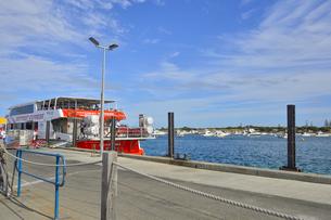 オーストラリア・西オーストラリア州のフリーマントルの沖合約18kmのインド洋に浮かぶロットネスト島のフェリー乗場の景観の写真素材 [FYI04483454]