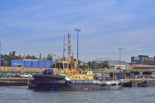 オーストラリア・西オーストラリア州のフリーマントル周辺の大型船と沢山の車が並ぶ光景の写真素材 [FYI04483461]
