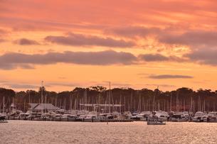 オーストラリア・西オーストラリア州の夕焼けの海に並ぶ沢山のヨットと建物の光景の写真素材 [FYI04483581]
