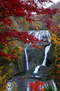紅葉の袋田の滝の写真素材 [FYI04484013]
