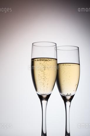 シャンパンの写真素材 [FYI04484087]