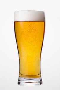 グラスビールの写真素材 [FYI04484095]