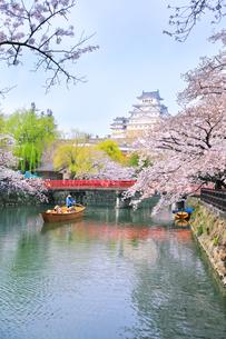 姫路城天守と桜に観光学習船の写真素材 [FYI04484545]