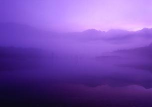 上高地 朝もやに包まれる大正池の写真素材の写真素材 [FYI04484616]