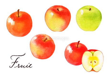 りんごのイラスト素材 [FYI04484955]