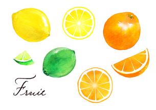 レモン、ライム、オレンジのイラスト素材 [FYI04484957]