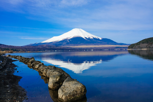 山中湖畔から富士山(逆さ富士) の写真素材 [FYI04485420]