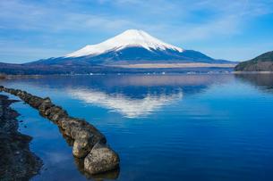 山中湖畔から富士山(逆さ富士) の写真素材 [FYI04485426]