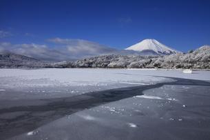 山中湖から眺める日本100名山 冬の富士山の写真素材 [FYI04486247]