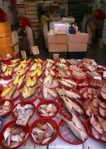 香港島の下町「北角}(ノースポイント)の青空市場の魚屋。左の黄魚(日本名イシモチ)のような日本で馴染みのある魚も多いが日本では見かけない魚も売っているの写真素材 [FYI04486513]