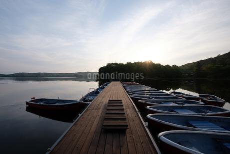 犬山 入鹿池の朝の写真素材の写真素材 [FYI04486536]