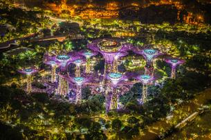 マリーナ・ベイ・サンズ展望台からの夜景(シンガポール)の写真素材 [FYI04486900]