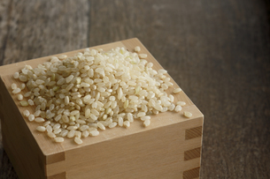 升に入った玄米の写真素材 [FYI04487056]