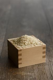 升に入った玄米の写真素材 [FYI04487061]
