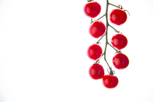 Fresh cherry tomatoes on white background.の写真素材 [FYI04487396]
