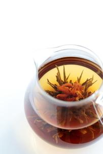 工芸茶 Blooming Flower Teaの写真素材 [FYI04487880]