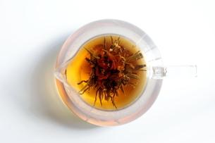 工芸茶 Blooming Flower Teaの写真素材 [FYI04487881]