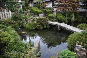 垂井の泉の写真素材 [FYI04488091]