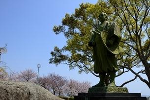 満開の桜と東御崎展望台広場広場,大石内蔵助像の写真素材 [FYI04488273]