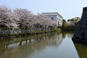 満開の桜と赤穂城跡の外堀から歴史博物館の写真素材 [FYI04488295]