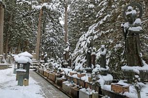 冬の高野山奥之院の写真素材 [FYI04488823]