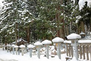 冬の高野山奥之院の写真素材 [FYI04488826]