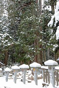 冬の高野山奥之院の写真素材 [FYI04488827]