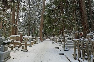 冬の高野山奥之院の写真素材 [FYI04488830]