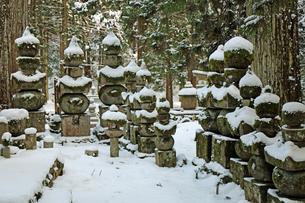 雪の高野山奥の院の写真素材 [FYI04488832]