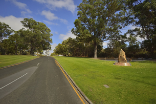 オーストラリア州のパースシティのキングスパークの木々の中に立てられた消防士メモリアルグローブの写真素材 [FYI04489052]