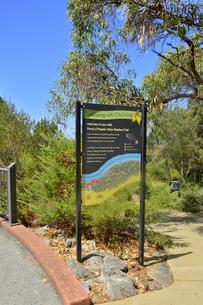 オーストラリア・西オーストラリア州のパースシティのキングスパークの木々の中に立てられた説明板の光景の写真素材 [FYI04489091]