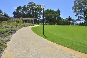 オーストラリア・西オーストラリア州のパースシティのキングスパークの中の木々に囲まれた歩道の写真素材 [FYI04489106]