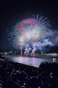 長良川の花火の写真素材 [FYI04489720]
