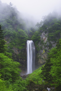 平湯大滝に霧の写真素材 [FYI04490409]