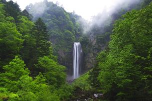 平湯大滝に霧の写真素材 [FYI04490410]