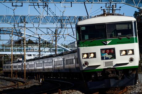 JR東日本185系電車「踊り子」の写真素材 [FYI04490416]